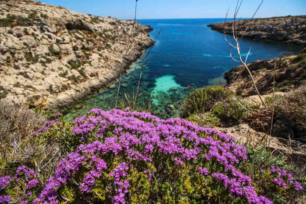 Cala Greca a Lampedusa