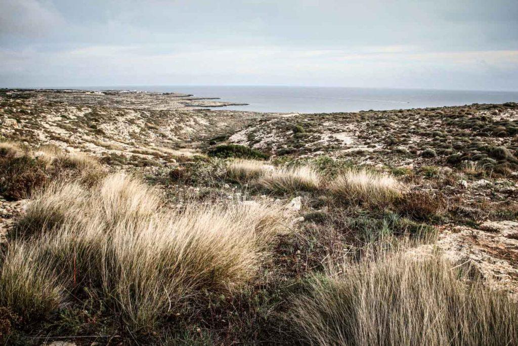 Riserva Naturale Orientata Isola di Lampedusa