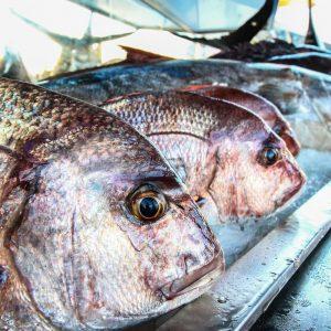 Dove mangiare a Lampedusa